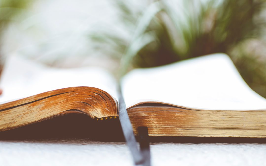 La Bible : fiable ? véridique ? inchangée ?